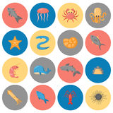 Vector cartoon sea underwater creatures icons Stock Photos