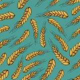 Vector cartoon seamless pattern of wheat,barley cereals, grains. Isolated on blue background. Graphic texture for bakery template. For restaurant, bakery shop Royalty Free Stock Image