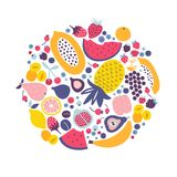 Vector cartoon set with tropical fruit, berries and citrus. Stock Image