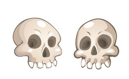 Vector cartoon skulls Stock Photography