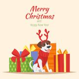 Dog with deer Christmas horns. Vector cartoon style illustration of cute dog with deer Christmas horns and presents at the back. New Year greeting card. Template Royalty Free Stock Photo