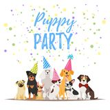 Dog Birthday party greeting card. Vector  cartoon style illustration of Dog party greeting card with dogs in festive cone colorful hats Royalty Free Stock Image