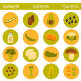 Vector cartoon vegan sources of protein Stock Photography