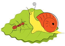 Vector cartoons snail and ant royalty free stock photography