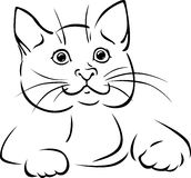 Vector cat - black outline illustration Royalty Free Stock Image