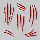 Vector cat claws marks set Stock Image
