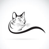 Vector of a cat design on white background. Pet Stock Photography