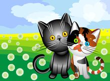 Vector Cat`s love. Black cat with tri-colored cat on a summer flowering meadow, clouds in the form of hearts Royalty Free Stock Photos
