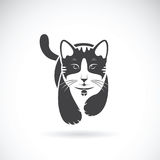 Vector of a cat on white background. Pet. Stock Photography