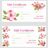 Vector Certificate with flower of Sakura blossom. Vector Japanese flowering cherry in a various kind. It can be used for textile wallpaper, wedding invitation stock illustration