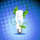 Vector CFL design Stock Photo