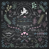Vector Chalk Drawing Rustic Floral Design Elements Stock Photos