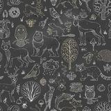 Vector chalk woodland seamless pattern on blackboard background. Stock Images