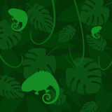 Vector chameleon on a dark background of leaves. Three vector silhouettes chameleons light on a dark green background with tropical leaves Royalty Free Stock Photos