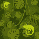 Vector chameleon on a leaf background. Two green chameleon  images on a tropical background of vines and leaves Stock Image