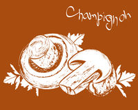 Vector champignons Stock Photography