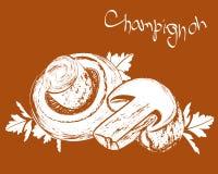 Vector champignons. Still life with tasty mushrooms champignons Stock Photography