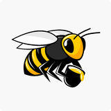 Vector character bee with honey. Vector illustration of a flying bee holds a bucket with honey Stock Photos
