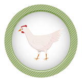 Vector character cartoon white chicken Stock Images