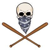 Vector  character - skull vandal Stock Photo