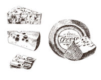 Vector cheese sketch drawing designer template. farm food collection. hand drawn dairy product Stock Image