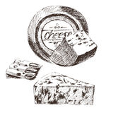 Vector cheese sketch drawing designer template. farm food collection. hand drawn dairy product Royalty Free Stock Images