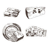 Vector cheese sketch drawing designer template. farm food collection. hand drawn dairy product Stock Photography