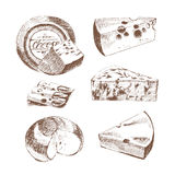 Vector cheese sketch drawing designer template. farm food collection. hand drawn dairy product Royalty Free Stock Image