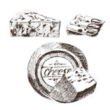 Vector cheese sketch drawing designer template. farm food collection. hand drawn dairy product Stock Images