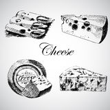 Vector cheese sketch drawing designer template. farm food collection. hand drawn dairy product Royalty Free Stock Photography