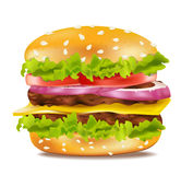 Vector cheeseburger on a white background. The Vector cheeseburger on a white background royalty free illustration