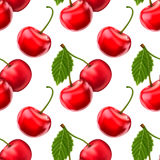 Vector cherries seamless background Royalty Free Stock Image