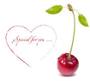 Vector cherry. Vector cherry with heart and copy space Stock Images