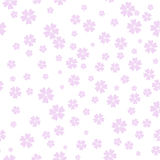 Vector Cherry Blossom pattern, spring background. Stock Image