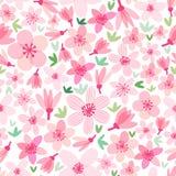 Vector cherry blossom seamless pattern. Sakura background. Isolated on white stock illustration