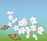 vector cherry branch and butterflies Royalty Free Stock Images