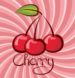 Vector Cherry Royalty Free Stock Photography