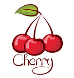 Vector Cherry Royalty Free Stock Images