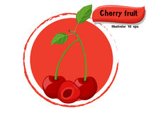 Vector Cherry fruit isolated on color background,illustrator 10 eps Royalty Free Stock Images