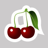 Vector Cherry. With White Contour Isolated on Grey Background Stock Photos