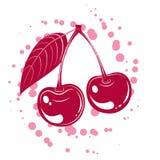Vector cherrys Stock Image