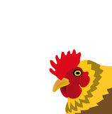 Vector chicken isolated on white background Royalty Free Stock Photography