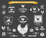 Vector Chicken Labels, Charts and Design Elements Royalty Free Stock Photography