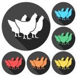 Vector chicken silhouette with long shadow. Vector icon Stock Photos