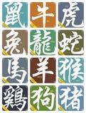 Vector 12 Chinese geplaatste dierenriemtekens Stock Fotografie