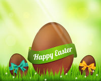 Vector  chocolate easter eggs  on green Stock Image
