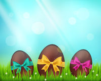 Vector  chocolate easter eggs  on green Royalty Free Stock Images