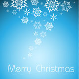 Vector  Christmas background with white snowflakes Stock Images