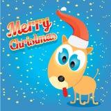 Vector Christmas dog in Christmas santa red hat Royalty Free Stock Photo