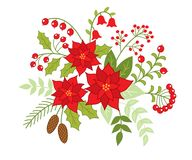 Vector Christmas Floral Bouquet with Poinsettia and Red Berries. Vector Christmas floral bouquet with flowers, poinsettia, berries, holly, pine cones and leaves Stock Photos